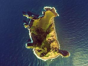 """<p><span style=""""font-size: 13.008px; line-height: 1.538em;""""><strong>SF Fig. 8.2.</strong> (<strong>B</strong>) Currents and swells are present around the small island of Kaminone, Kagoshima Prefecture, southern Japan</span></p><br />"""