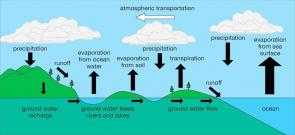 <p><strong>Fig. 2.5. </strong>(<strong>C</strong>) Diagram of the water cycle.</p><br />