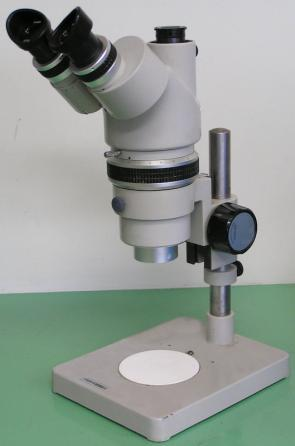 <p><strong>SF Fig. 2.2.</strong> (<strong>B</strong>) Dissecting microscope</p><br />