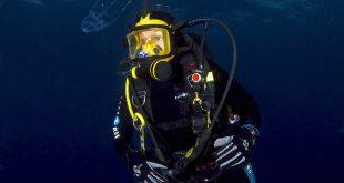 Jellyfish researcher