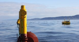 Wave energy testing device