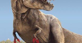 Artist's rendering of savage T. rex. Credit: Steve Stanley.