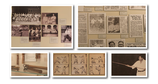 Karate Exhibit Images