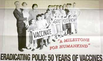 Polio Revisited Poster