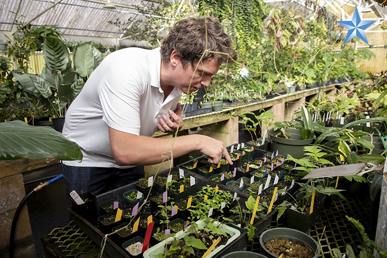 Nate Kingsley, a UH seed conservationist, shows off growing plants that he will take to Maui in the Lyon Arboretum greenhouse.