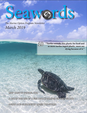 Seawords March 2019 Cover