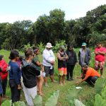 Kiana Frank showing students how to get dirt samples from the loʻi