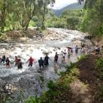 Students helping to restore the auwai