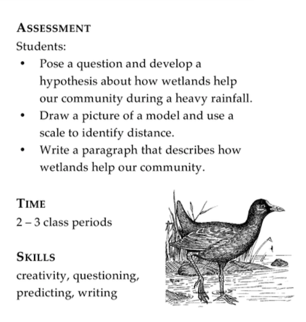 """<p>Fig. 1. Students understand more about the benefits of wetlands in this activity ʻWondering About Wetlands"""" from <em>Aloha ʻĀina.</em></p>"""