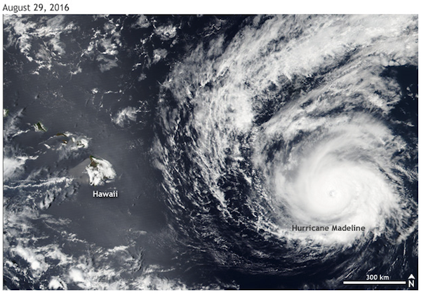<p>Fig. 2. Hurricane Madeline tracked towards Hawai'i in August 2016, but weakened before making landfall, causing very little damage.&nbsp;</p>