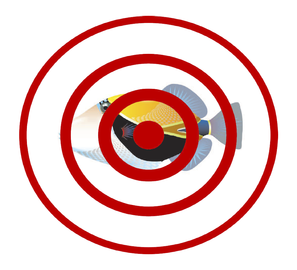 <p>Fig. 3. Use this target to test your echolocation skills! (Note: you can also find this image in the attached worksheet)</p>