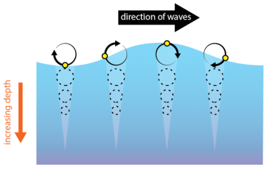 <p>Fig. 2.&nbsp;When energy in a wave passes through the water, water molecules move in a circular motion. Here, a small floating object (yellow circle) returns to its original location due to the orbital motion of waves in deep water.</p>