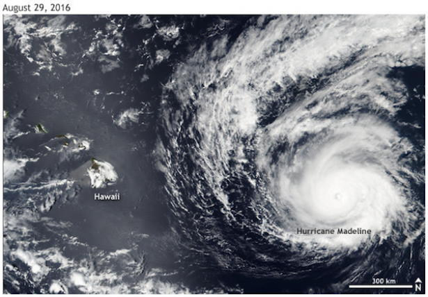 <p>Fig. 2. Hurricane Madeline tracked towards Hawai'i in August 2016, but weakened before making landfall, causing very little damage.&nbsp;</p><br />