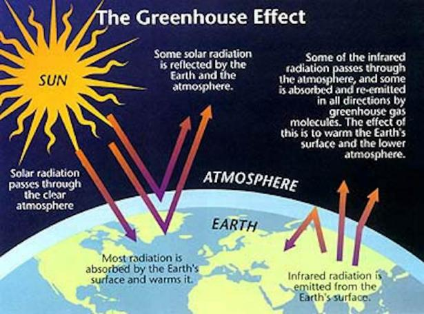 <p>Fig. 3. This diagram shows how the greenhouse effect of the atmosphere influencing our weather and climate.</p><br /> <p>&nbsp;</p><br />
