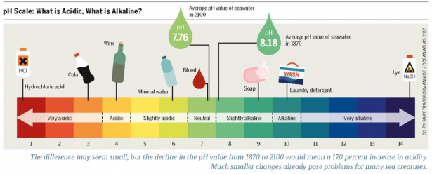 <p>Fig. 7. The pH scale compares the acidty or alkalinity of various solutions.</p><br />