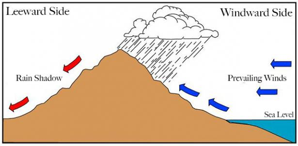 <p>Fig. 2. The patterns of rainfall around the Hawaiian Islands is due in large part to the interaction of the winds and landscape.&nbsp;</p><br />