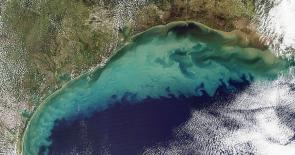 <p>Fig. 4. An aerial image of the Gulf of Mexico shows runoff and resuspended sediments in the hours after Tropical Storm Ida in 2009.</p>
