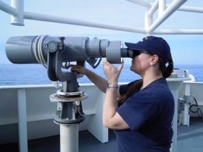 <p>Fig. 1.&nbsp;A biologist on a National Oceanic and Atmosphere Association (NOAA) ship surveys for dolphins and marine turtles to avoid entangling them in research nets.</p><br />