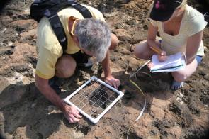 <p>Fig. 2.&nbsp;Ecologists using a quadrat to sample and count intertidal organisms.</p><br />