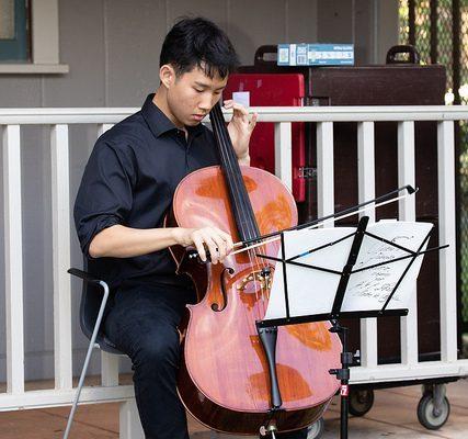 Reception cello player