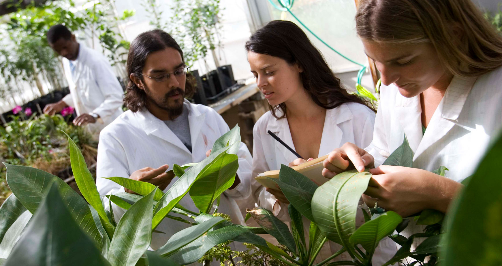 botany students in the lab