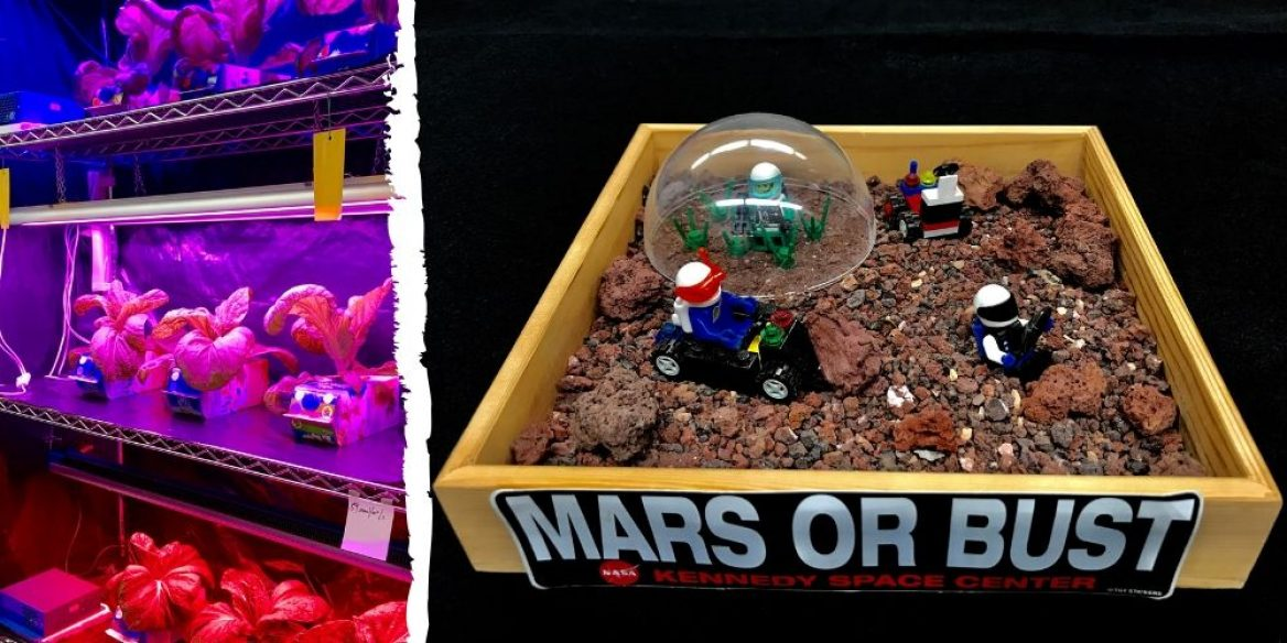 Image of plants growing under purple lighting and image of Mars or Bust diorama