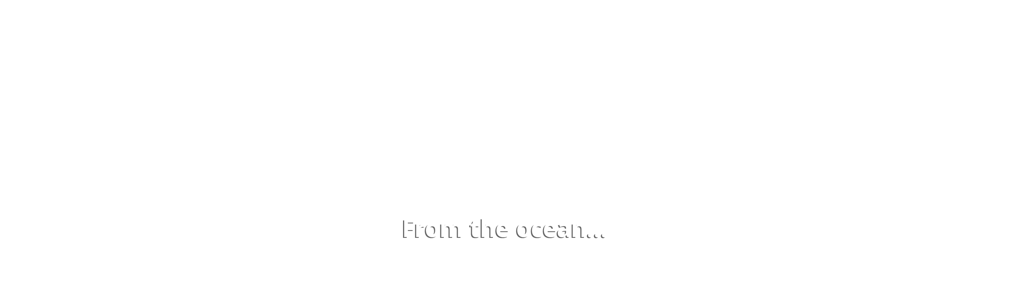 From the ocean