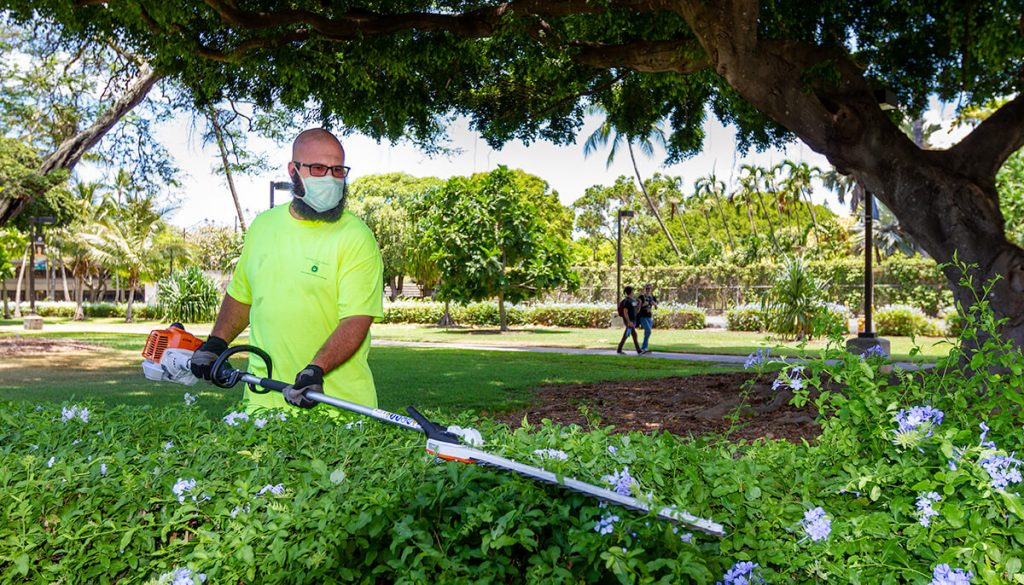 UH Manoa groundskeeper at work